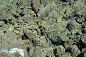 Quarry #2