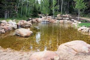 Swim Pond #2