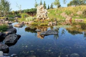 Pond #9