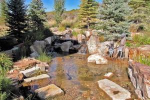 Pond #11