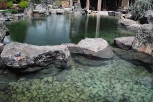 Swim Pond #1