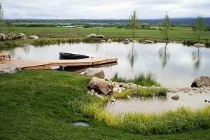 Swim Pond #5