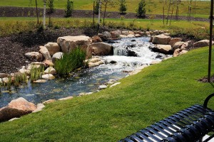Brookside Stream